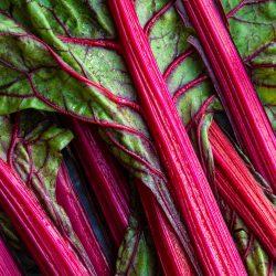 Rhubarb & Raspberry <br/>Fruit Spread <br/>150g jar 6