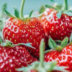 Strawberry Fruit Spread <br/>150g jar 9