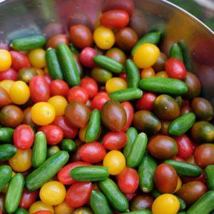Tomato Relish <br/>150g jar