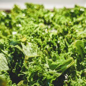 CHIPS <br>Organic Kale Chips <br> MELBOURNE <br>